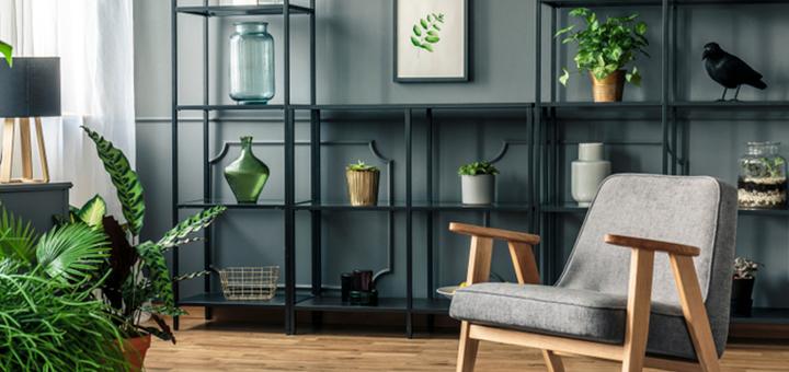 beneficios plantas departamento hogar