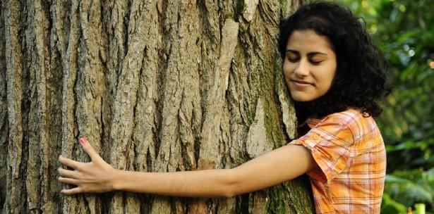 Departamentos ecológicos: en busca de un estilo de vida sostenible