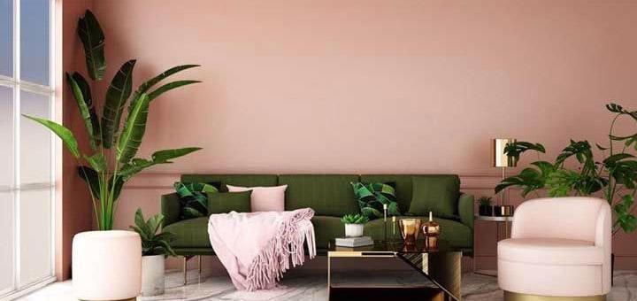 sala decoración plantas