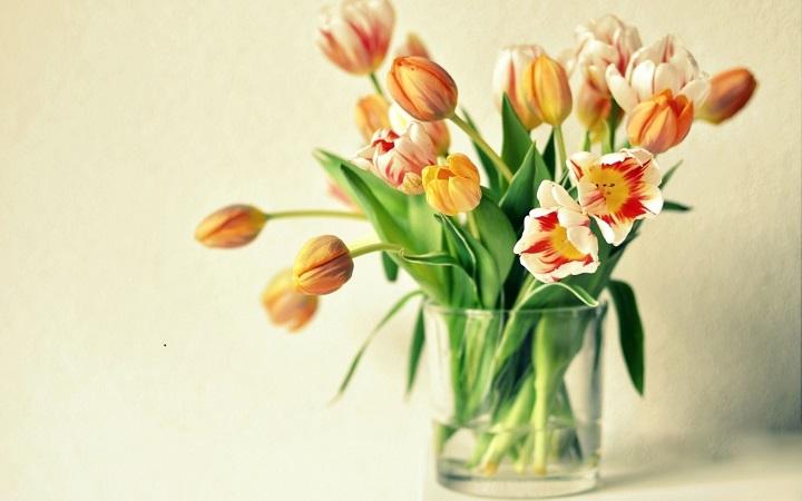 florero aroma departamento