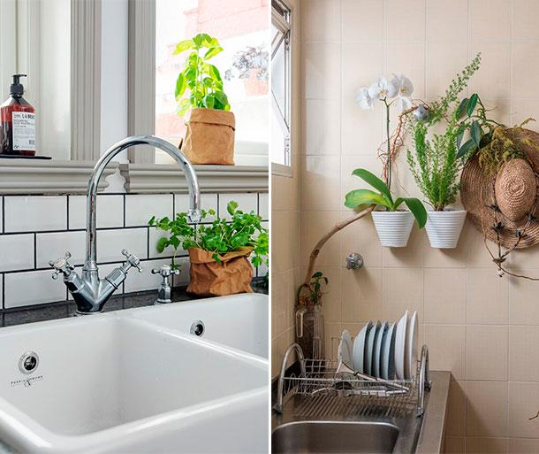 Cómo construir un pequeño jardín interior en tu departamento?