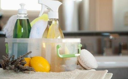 Departamentos ecoamigables: productos de limpieza naturales