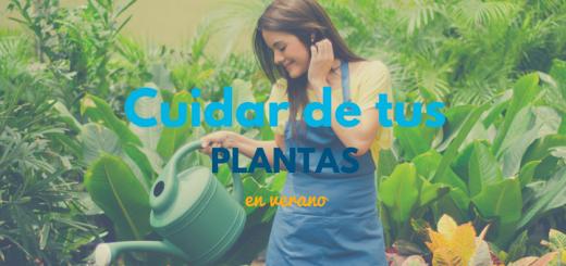 Cuidar de tus plantas, Ciudaris