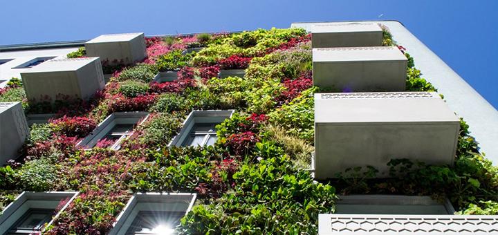 que son edificios ecologicos